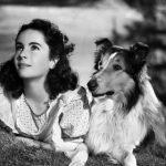 Elizabeth-And-Lassie-elizabeth-taylor-6068004-400-320