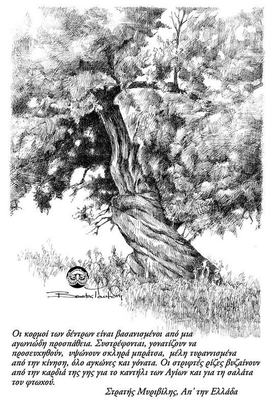 OLIVE-TREE-21.jpg
