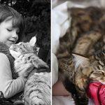 cat-girl_590_1