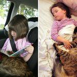 cat-girl_590_2