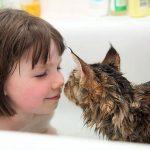 cat-girl_590_5