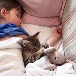 cat-girl_590_9