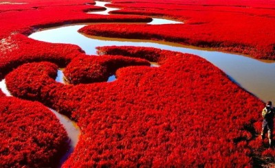 Red-colored-Beach-in-China-400x245.jpeg