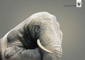 public-service-announcements-social-issue-ads-22.jpg