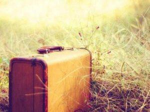 grass_leaving_suitcase-60fd05b1cb6101006c0e5e0815924937_h_large_1.jpg
