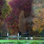 BELGIUM-WEATHERREUTERS-YvesHerman