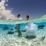 stingray-city-in-the-grand-cayman-where-a-newlywed-couple-embarks-on-their-new-adventure-through-the-areas-crystal-clear-water