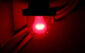 redlight.medium.jpg