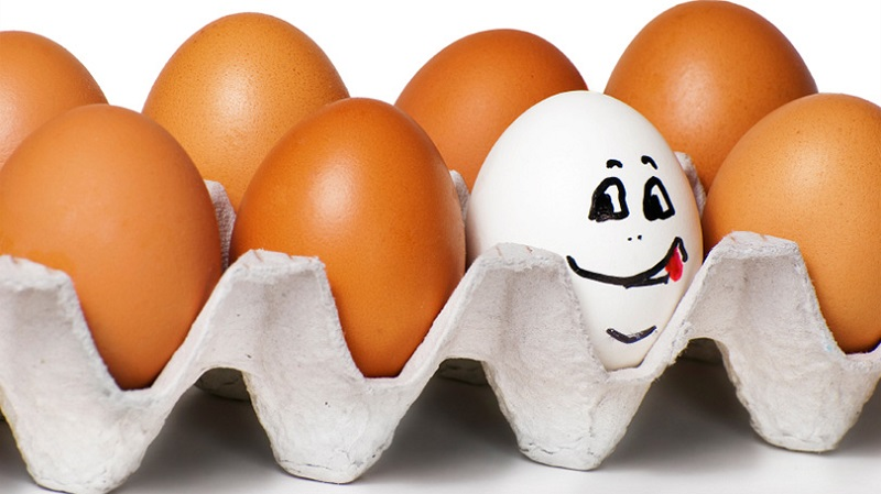 eggs-with-personality.jpg