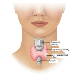 Thyroid-Nodulesellinika.jpg