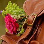 backpack-1482611_960_720