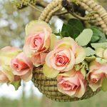 roses-2205009_960_720