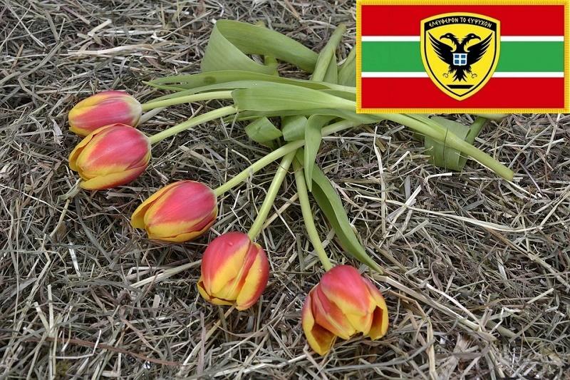tulips-2107214_960_720.jpg
