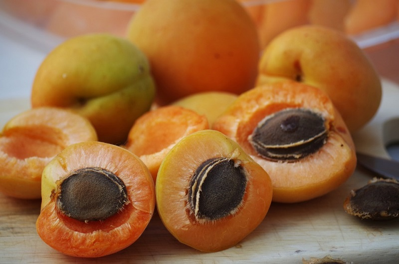 apricots-1502169_960_720.jpg
