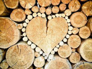 heart-1288420_960_720.jpg