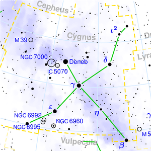300px-Cygnus_constellation_map.png