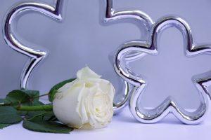 rose-2461137_960_720.jpg