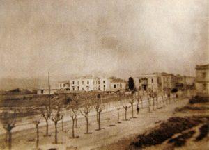 1910_Patision.jpg