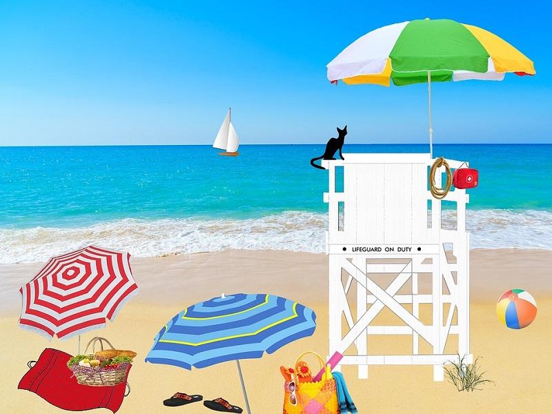 beach-1485630_960_720.jpg