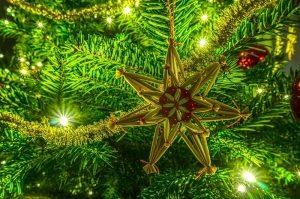 christmas-3038183_960_720.jpg