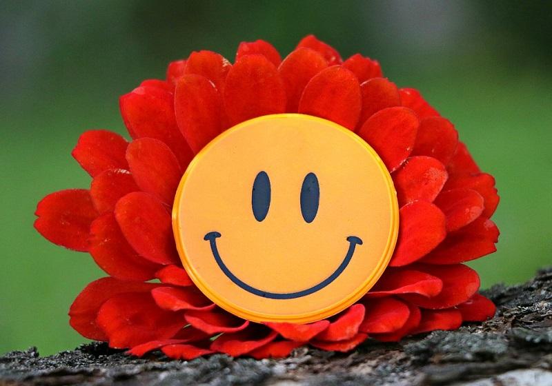 smile-1539196_960_720.jpg