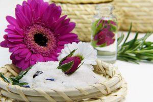 flower-3086596_960_720.jpg