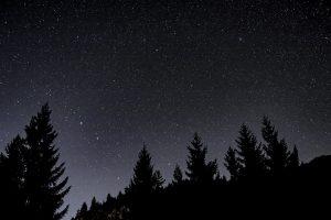 night-2845347_960_720.jpg